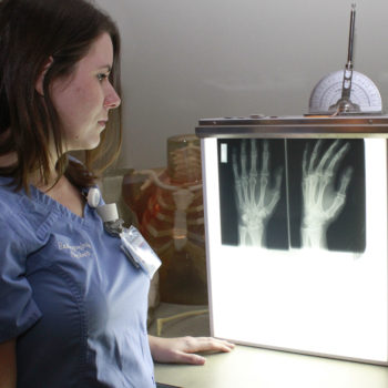 Radiography student looking at X-ray of hand